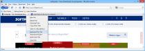 Firefox Diamond Edition  3.5 image 1