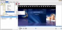 Flash Player Pro  6.0 image 2